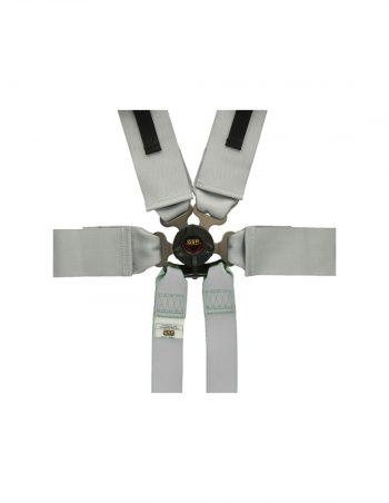 QR336-SILVER-qsp-6-point-harness-pro-plus-fia-grey-westcoast-motorsport_close
